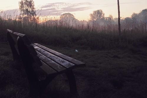 nature fog sunrise bench
