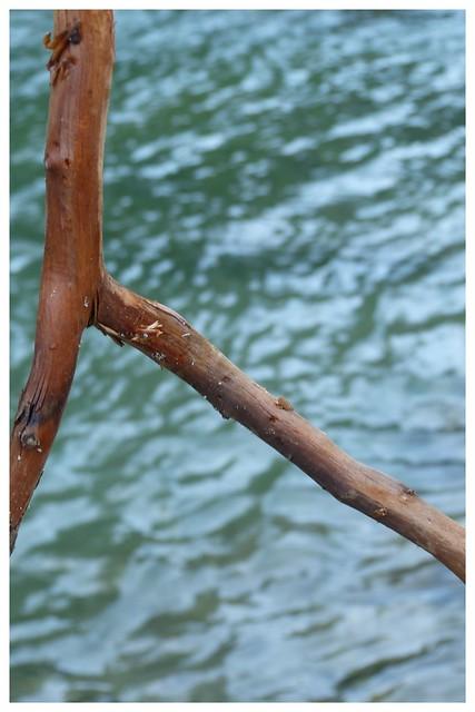 Kofel und Ammer 2014-05-219
