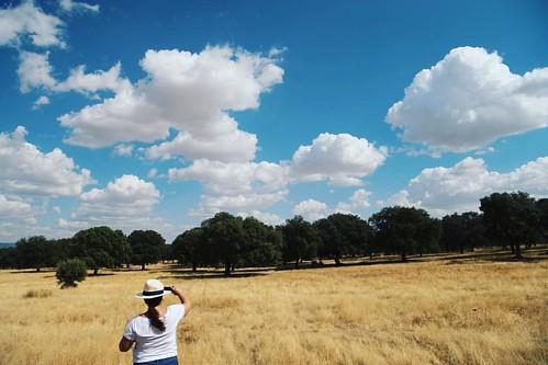 Esperando la nube adecuada para capturarla y exprimirla! #alcoba #castillalamancha #igersciudadreal #clouds #nubes #cielo