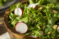 Raw Organic Endive and Radish Salad