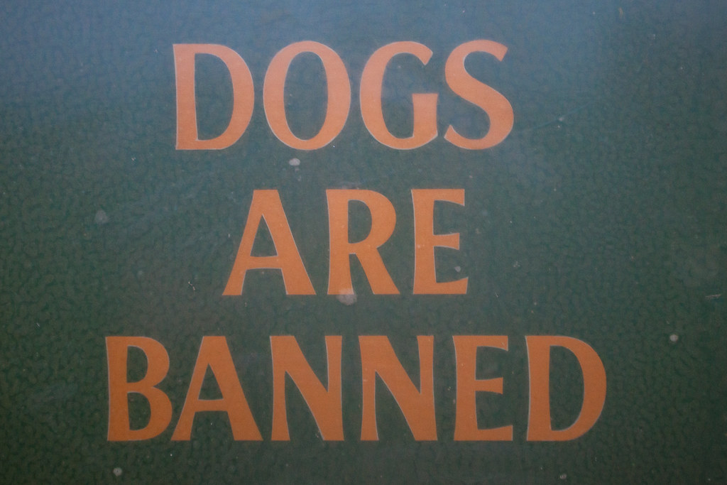 Dogs Are Banned