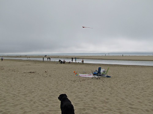 Maggie at Cannon Beach
