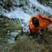 above the waterfall by laura zalenga