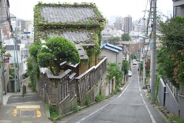 東京路地裏散歩 目白台の富士見坂 2013年9月24日
