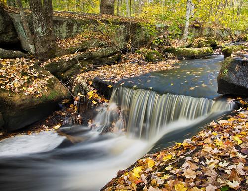 autumn falls by enjoiskate8