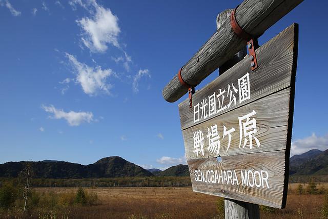 20131013_nikkou_002