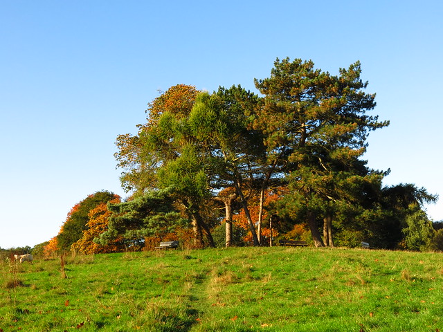 The Little Tumulus