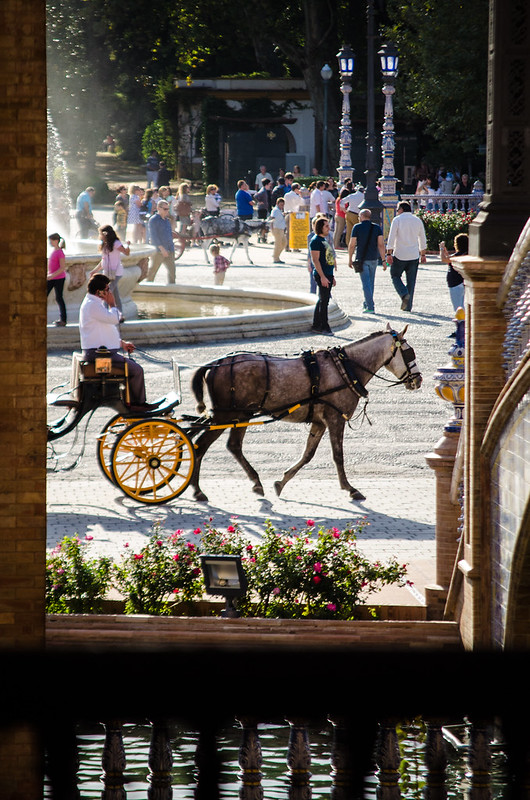 Taking a carriage ride at Sevilla's Plaza de España.