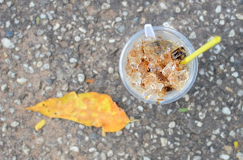 leaf, iced coffee