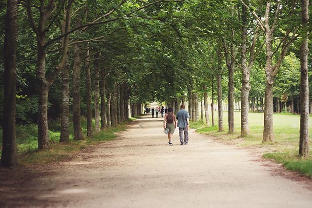 #412 Paris - Jardin du château de Versailles