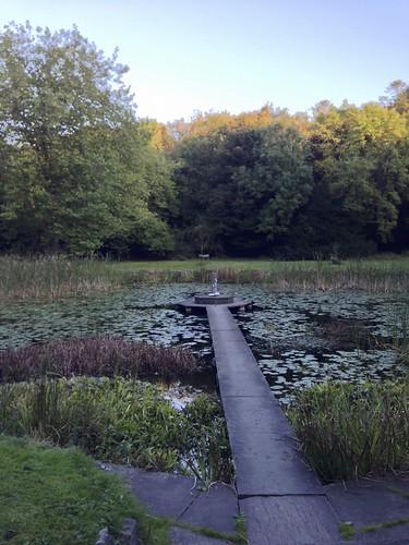 Lily Pond, Dromoland Castle
