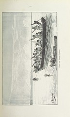 """British Library digitised image from page 231 of """"Meine zweite Durchquerung Äquatorial-Afrikas, vom Congo zum Zambesi während der Jahre 1886 und 1887"""""""