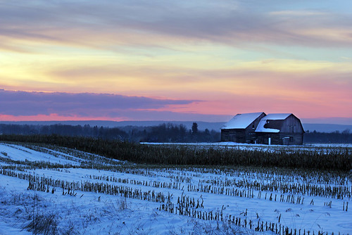 winter sunset snow clouds cornfield barns ilobsterit