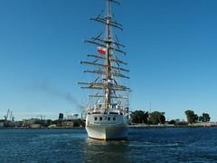 Segelschulschiff DAR MLODZIEZY beim Ablegen in Gdynia (PL)