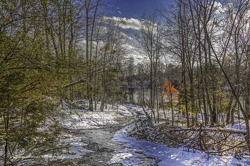 winter lake snow nature water landscape virginia woods path trail beaverdam thechallengefactory canoneos5dmarkiii
