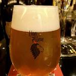 ベルギービール大好き!! リオン・ア・プリュム メティッシュ Lion plume Carioca metisse