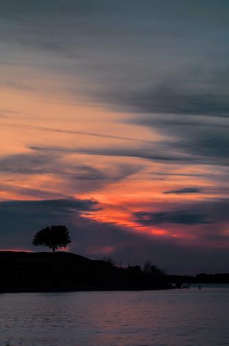 sunset tree one pentax k7 lakewaco koehnepark