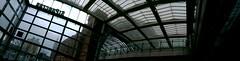 St Pancras roof panorama