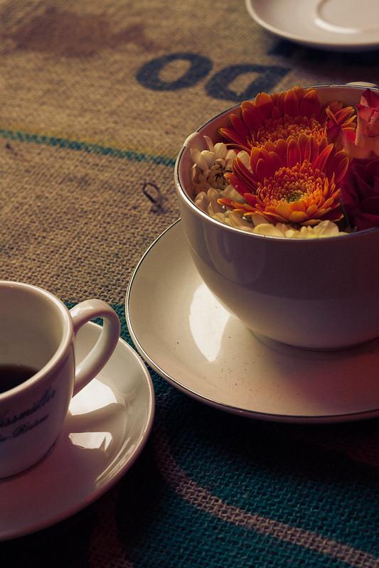 Café de la tierra