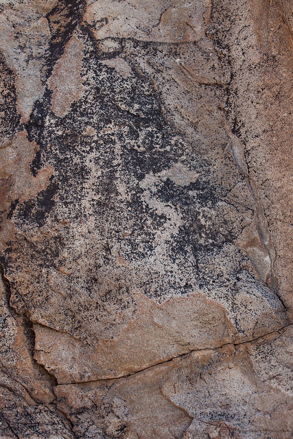 Snake Petroglyph