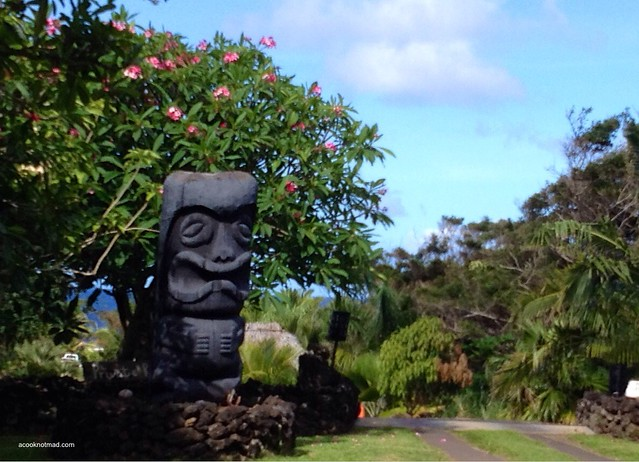 7 days on Maui, Go, See, Write