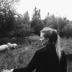 Sommar i Östersund.