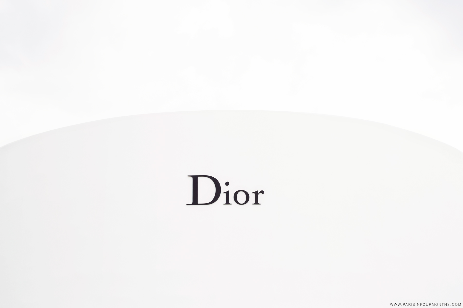 Dior Haute Couture by Carin Olsson (Paris in Four Months)