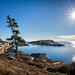 1 degree Celsius and sunny at Polly's Cove by Nancy Rose