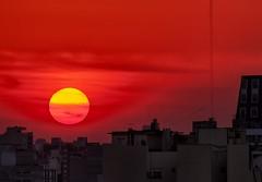 Sol tardío - Belated Sun