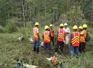 Reforestación Panamá