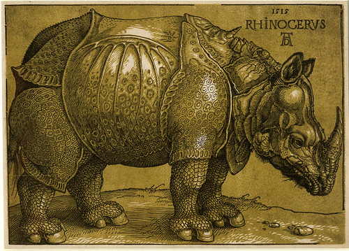 Albrecht Dürer, Rhinoceros, woodcut printed with an olive gr