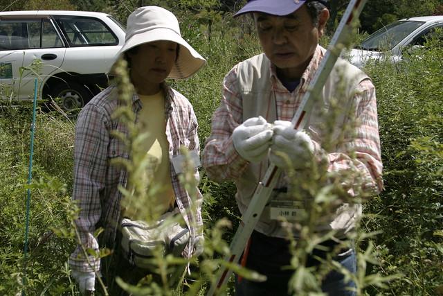 1班は即席班ながら,すらすらと植物名がでてきて,調査がはかどった.