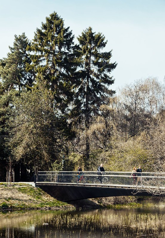 MLRP. Woven Bridge #6