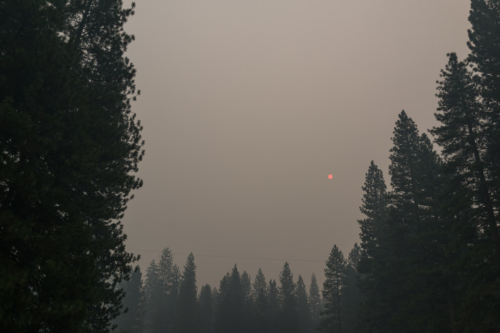 Through the ash and smoke