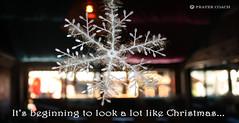 Look Like Christmas Snowflake