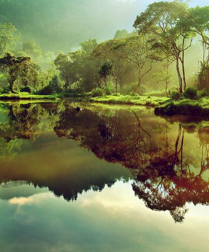 Gunung Gede in Indonesia.