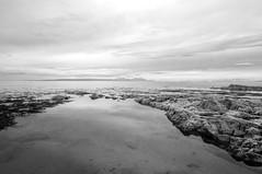 Ayrshire Seascape VI