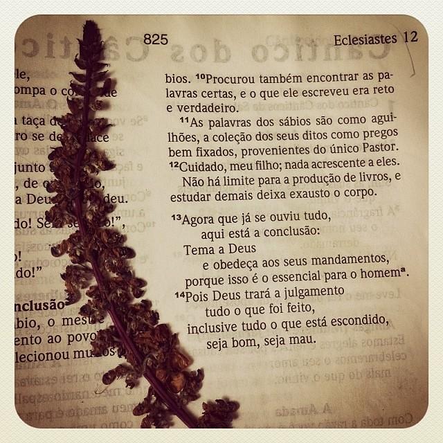 Primeira leitura do ano!!! \o/ (abrindo o presentão que ganhei de Deus: mais um ano de vida na Sua presença!) ❤ ...que eu me lembre de todas as suas maravilhas, Senhor... Tudo o que eu faça que seja para sua glória... Quero te obedecer... Te conhecer mai