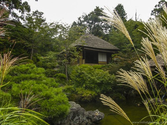 Castillo Nijo - Kioto