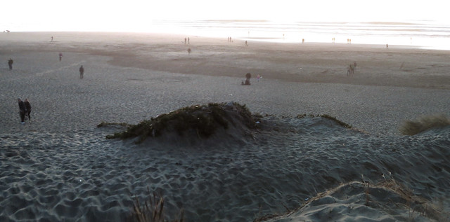 Ocean Beach at sunset, San Francisco (2014)