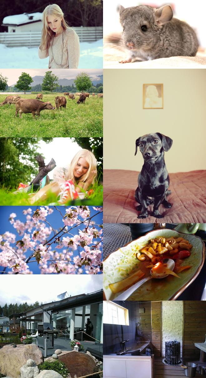 blog122