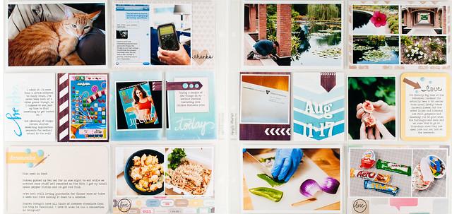 project life 2013 week 33.jpg