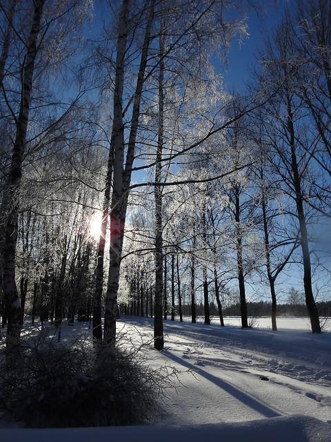 Русская зима, Sony DSC-TX55