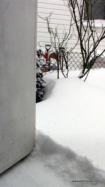 Side-Door-Snowpocalypse-14