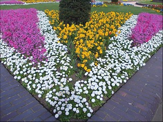 One of Many Flowerbeds .