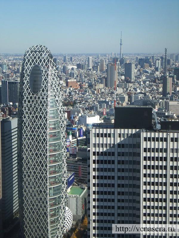 Вид со смотровой площадки Токийской мэрии