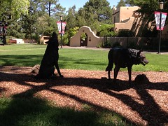 Lobos guard the campus
