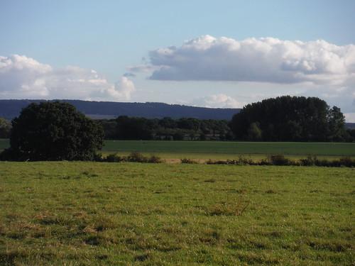 Chilterns View