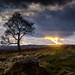 Cloudy November Evening by Peter Quinn1