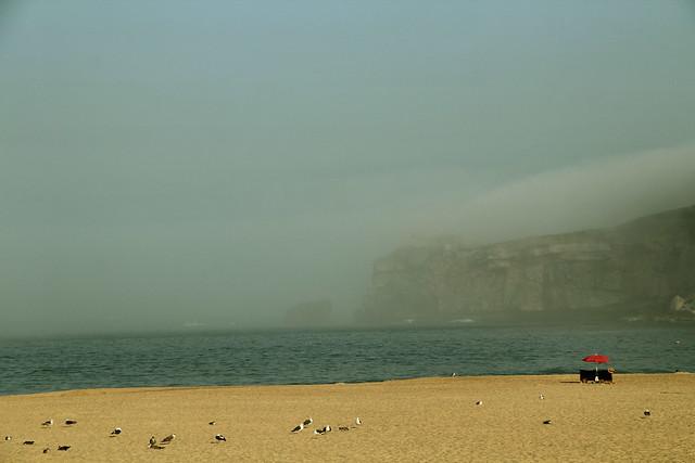 La nebbia all'orizzonte